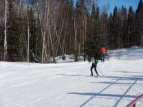 skier on trail skiing